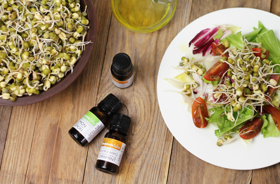 Jak používat esenciální oleje do jídla?