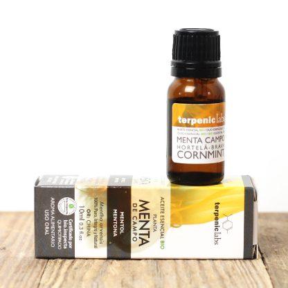 Máta rolní - jedlý esenciální olej
