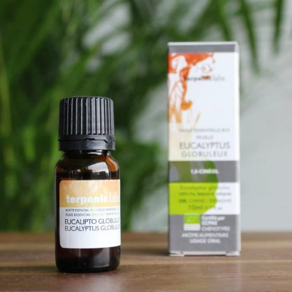 Esenciální olej eukalyptus globulus BIO (potr. kvalita)